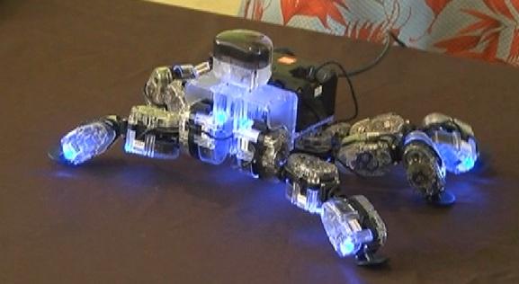 robots-humanoides-presentes-en-el-zocalo-2